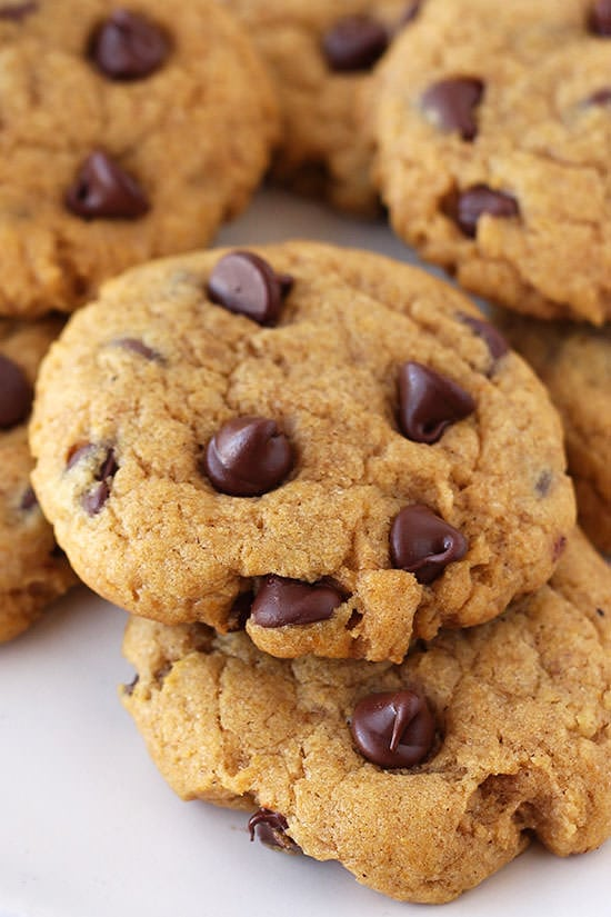 Pumpkin Chocolate Chip Cookies - soft yet CHEWY. Not cakey!!